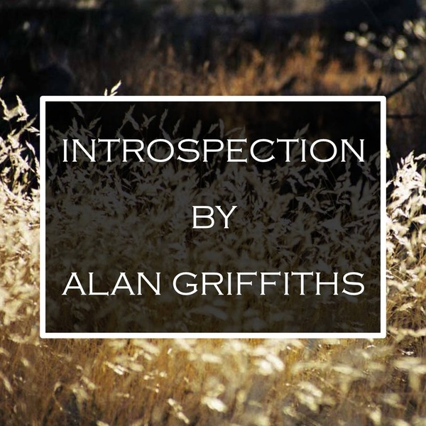 ALAN GRIFFITHS - INTROSPECTION