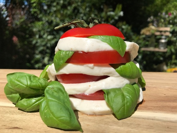 Alternativen zu Mozzarella