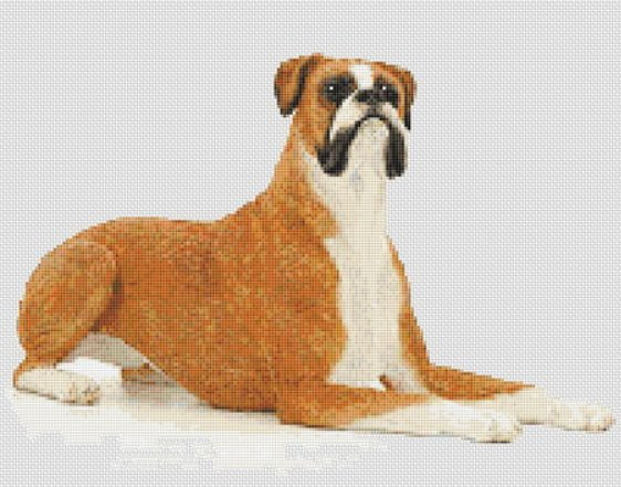 Boxer Dog Counted Cross Stitch Pattern