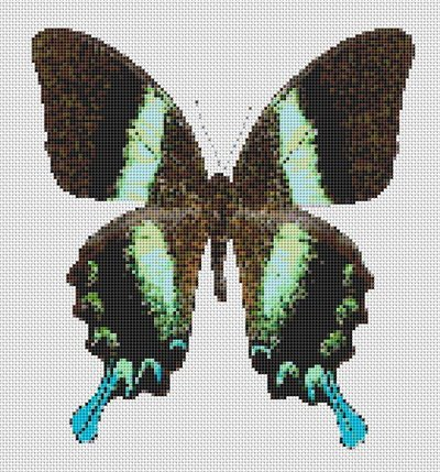 Butterfly Cross Stitch Pattern Chart #8 Turquoise Aqua