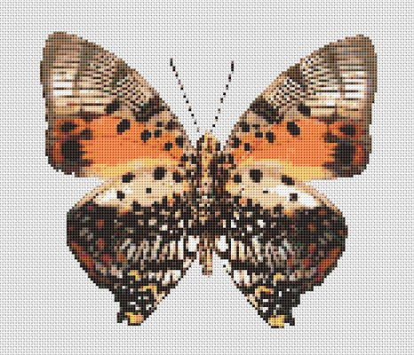 Butterfly Cross Stitch Pattern Chart #6 Brown Orange