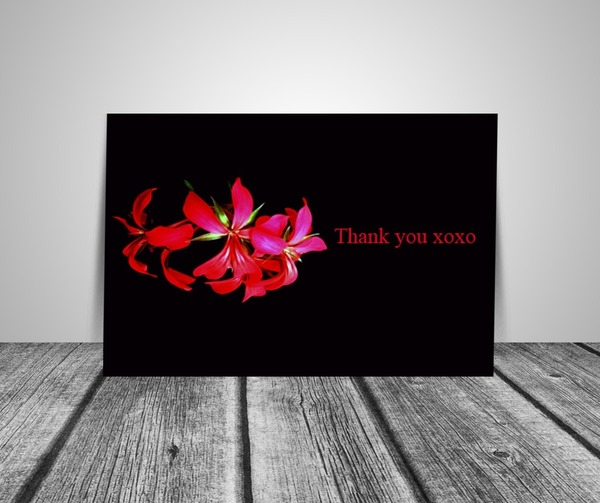Set Of Six Pink Floral And Black Thank You Note Cards