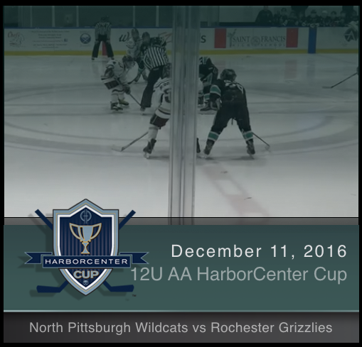 12U AA North Pittsburgh Wildcats vs Rochester Grizzlies