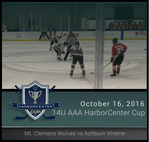 14U AA Mt. Clemens Wolves vs Ashburn Xtreme